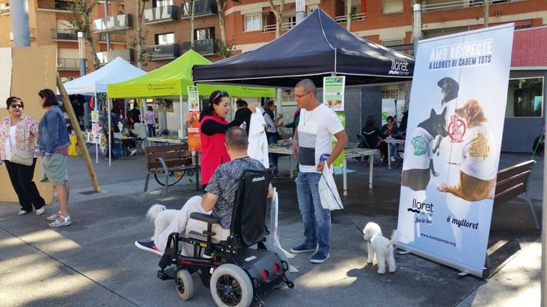 84 gossos i 47 gats s'han xipat i donat d'alta amb la campanya d'identificació gratuïta d'animals de companyia a Lloret