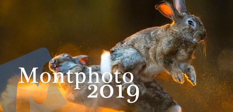 Arriba MontPhoto Fest 2019 a Lloret de Mar