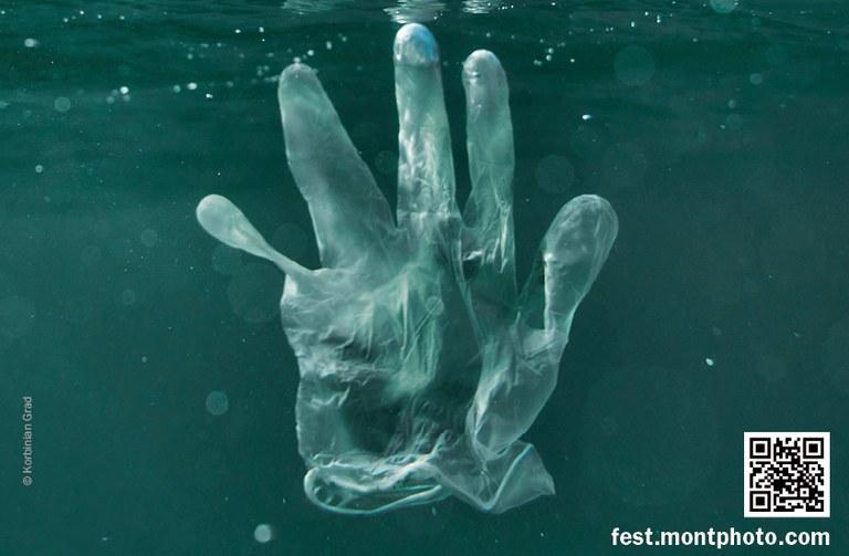 La 24a edició de MONTPHOTO, la primera que  es celebrarà online