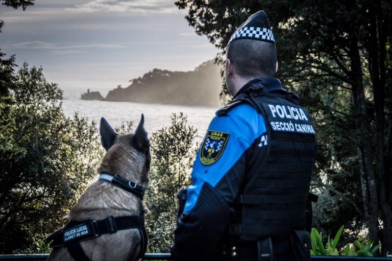 La Secció Canina de la Policia Local aquest 2017 ha trobat 530 grams de marihuana, 200 grams d'haixix, 80 dosis de cocaïna i 33 pastilles d'èxtasi i ha imposat 426 sancions