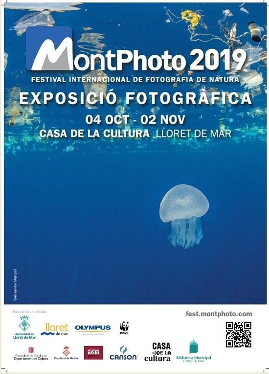 Exposició 'Montphoto'
